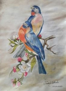 Kuş serisi 2